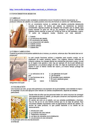 page_1_thumb_large (1)